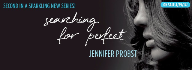 blog tour banner searching for perfect