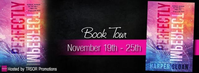 perfectly imperfect book tour banner