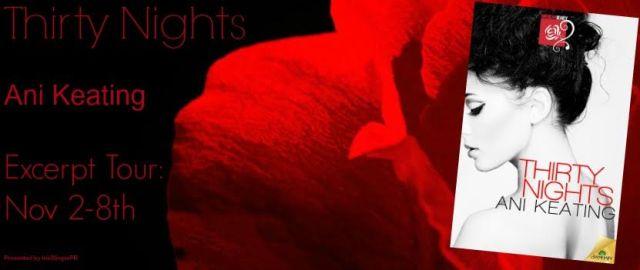 thirty nights blog tour banner